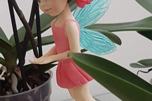 georgia ampelakiotou's flower fairy class results