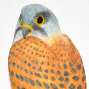 realistic shaped novelty Kestrel cake